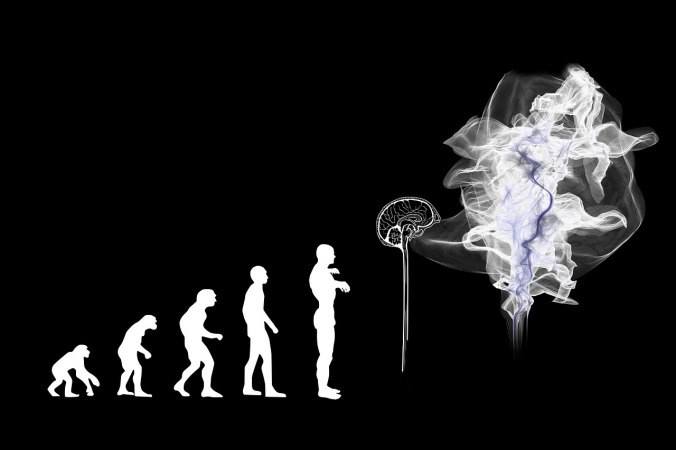evolution-3885331_1280